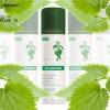 Fichier de beauté: New Shampooing sec Klorane pour les cheveux gras