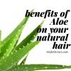 Bénéfices de l'aloe sur les cheveux naturels