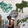 Bricolage Moss Graffiti peinture Résultats