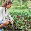 Cultivez vos propres légumes