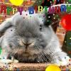 Joyeux anniversaire à nous!