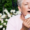 Comment parler à votre médecin: Airborne questions allergie