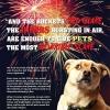 Garder vos animaux en sécurité sur le 4 Juillet!