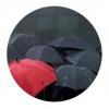 Rainy Day sociale