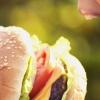 L'anatomie de l'appétit