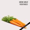 Conseils pour de plus en plus grandes des légumes