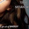 Top 10 des remèdes naturels pour traiter les pellicules