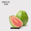Top avantages pour la santé de goyave et de goyave feuilles