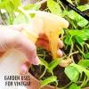 Façons d'utiliser le vinaigre dans le jardin